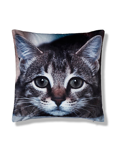 sparkling cat paw print - mint cushion. $ 15% Off with code OCTOBERDEALZ. Himalayan Cat Silhouette Pillow. $ 15% Off with code OCTOBERDEALZ. 41x41 cushion with orange kitten illustration. $ 15% Off with code OCTOBERDEALZ. Monogrammed Girly Whimsical Cats floral stripes Lumbar Cushion.