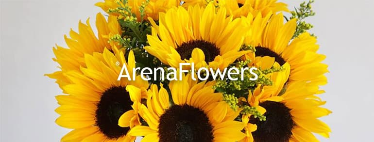 Arena Flowers Promo Codes 2019