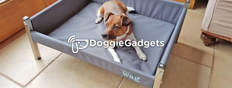 Doggie Gadgets Discount Codes 2019