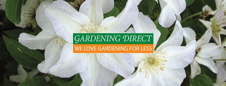 Gardening Direct Discount Codes 2021