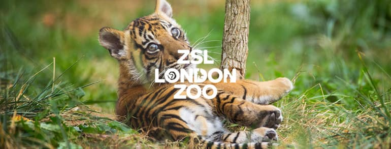 London Zoo Voucher Codes 2018
