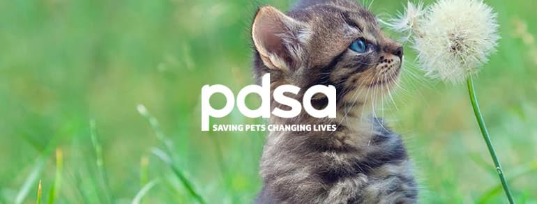 PDSA Discount Codes 2020