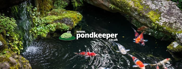 Pondkeeper Discount Codes 2020
