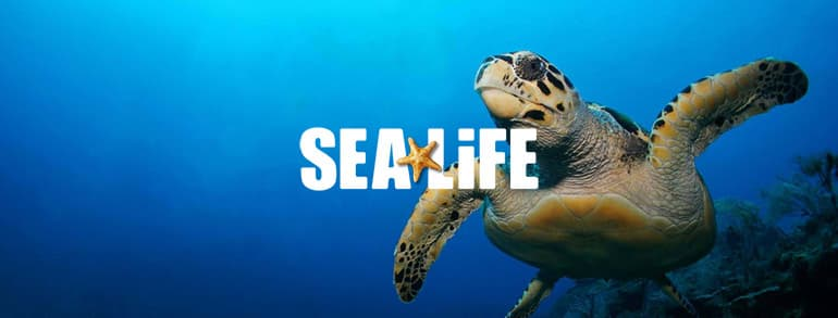Sealife Voucher Codes 2020