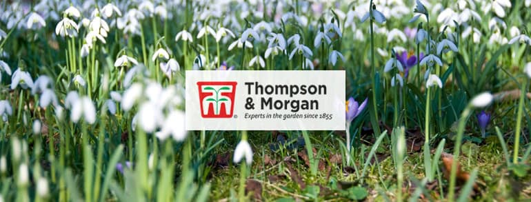 Thompson and Morgan Voucher Codes 2018
