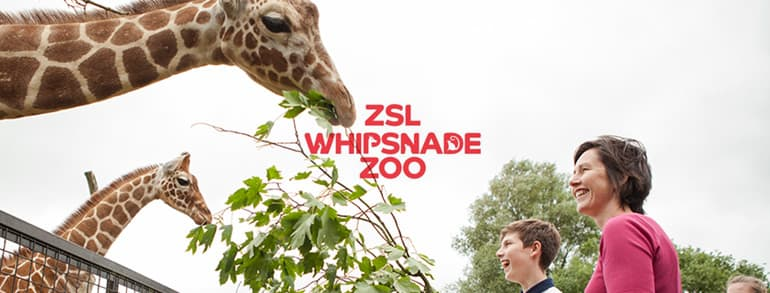Whipsnade Zoo Voucher Codes 2018