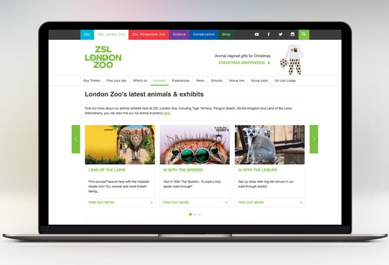 Rediscover London's Zoo