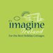 Imagine Ireland logo
